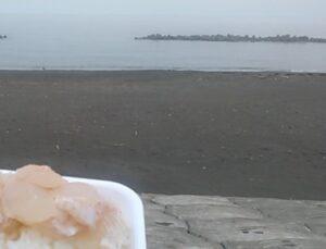 tokoro-seaside